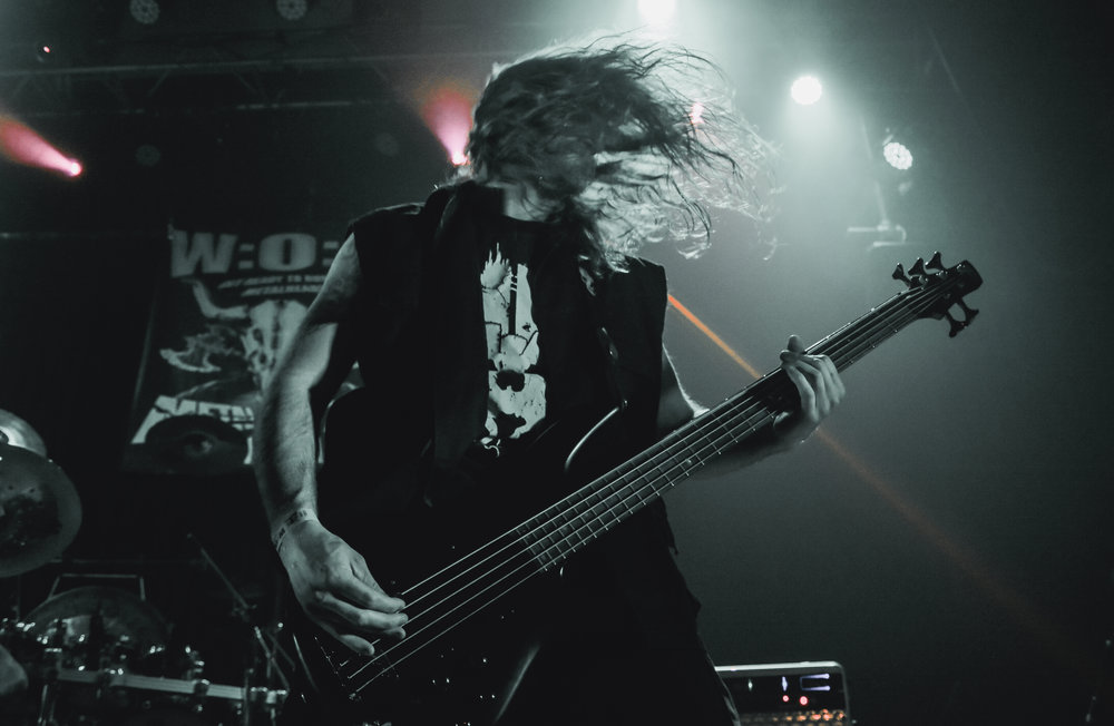 Matt Hems - Bass