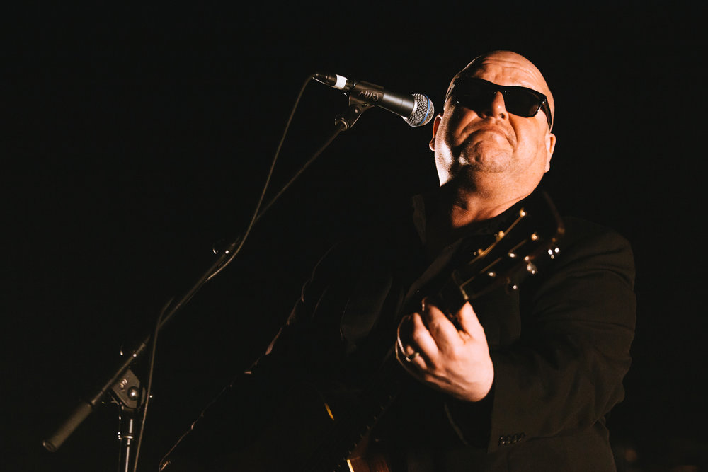 Mitch Lowe Photo - Pixies - Riverstage-16.jpg