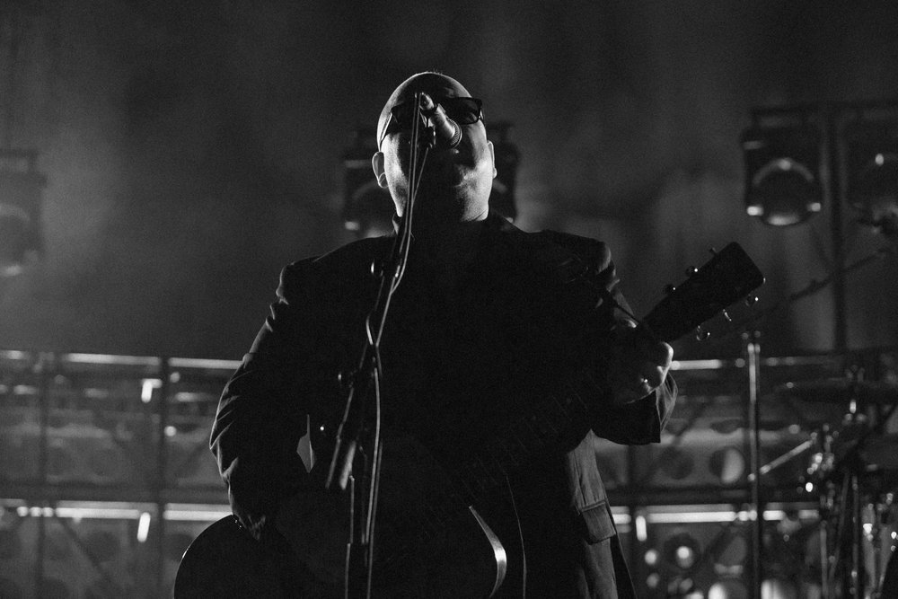Mitch Lowe Photo - Pixies - Riverstage-30.jpg