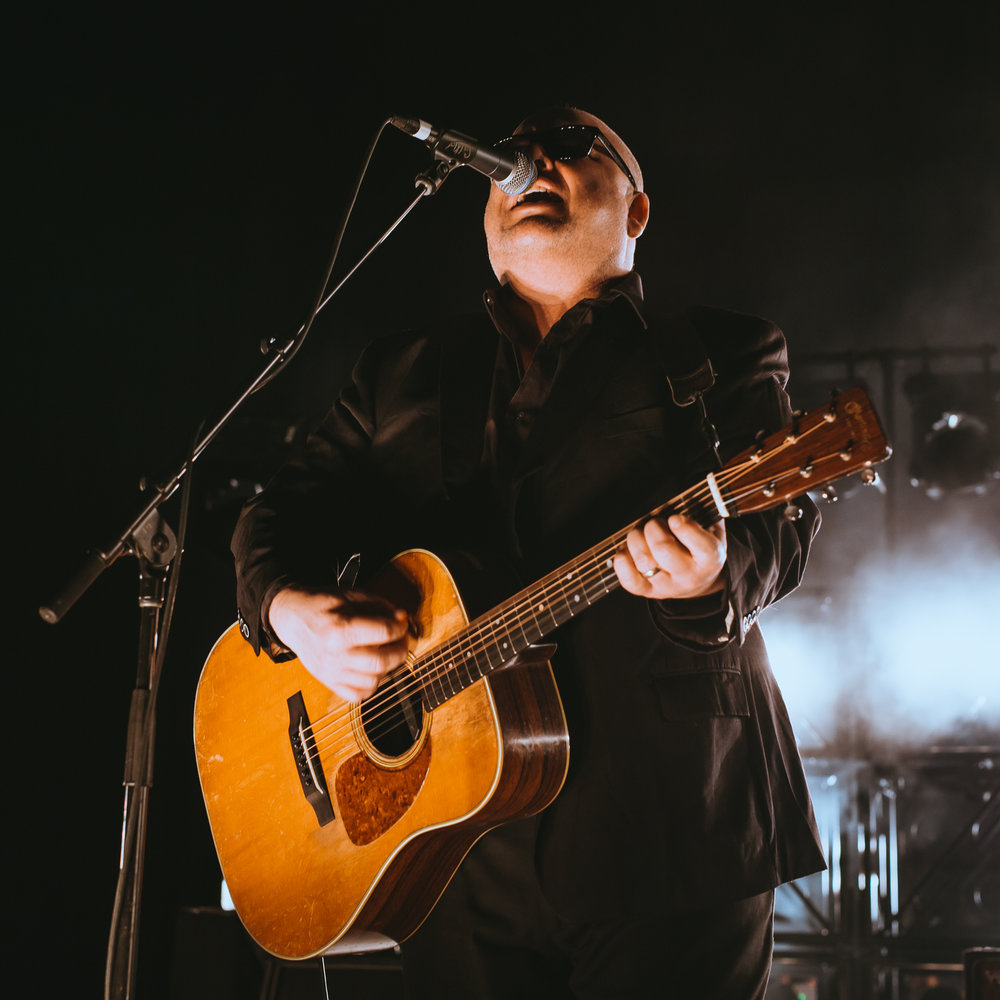 Mitch Lowe Photo - Pixies - Riverstage-4.jpg