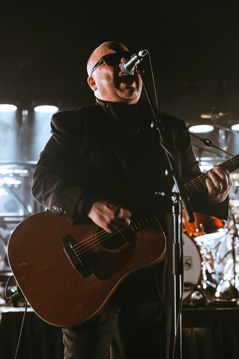 Mitch Lowe Photo - Pixies - Riverstage-10.jpg