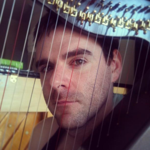 My electro-acoustic harp
