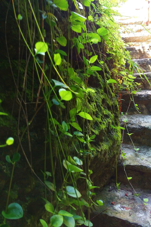 Cascade Caverns - Three Heel Clicks 12.jpg