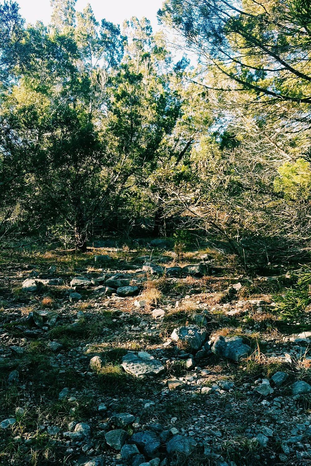 Wild Basin - Austin - Three Heel Clicks 14.jpg