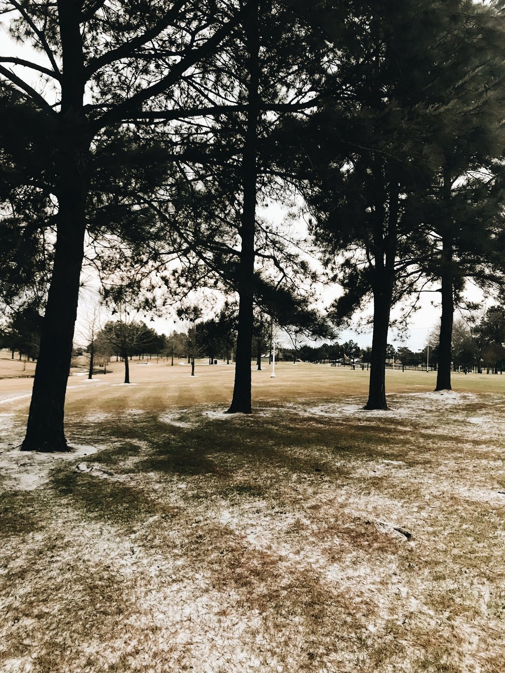 Three Heel Clicks - Snow Day (5).jpg