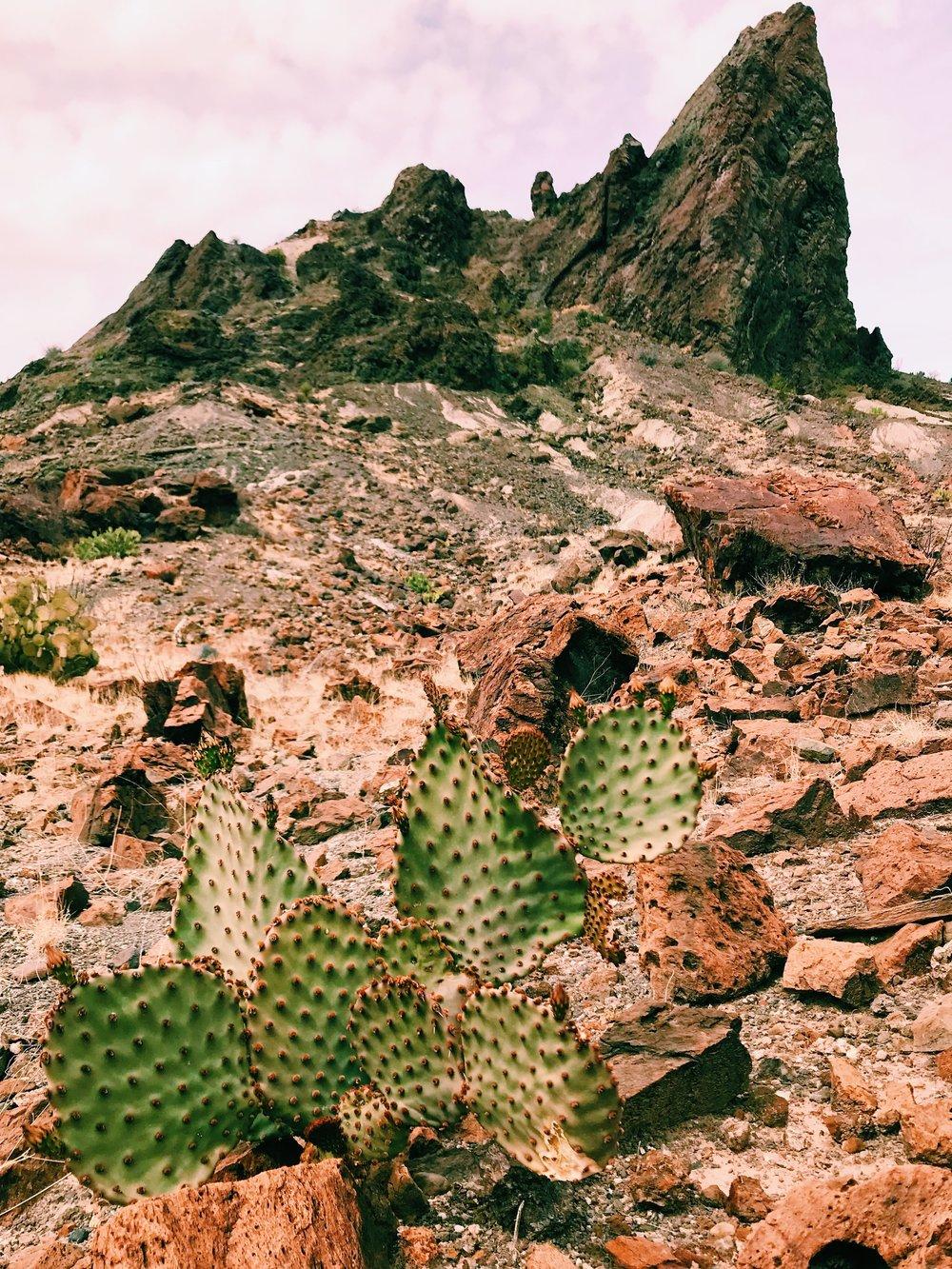 Three Heel Clicks - Visiting the Santa Elena Gorge (8).jpg