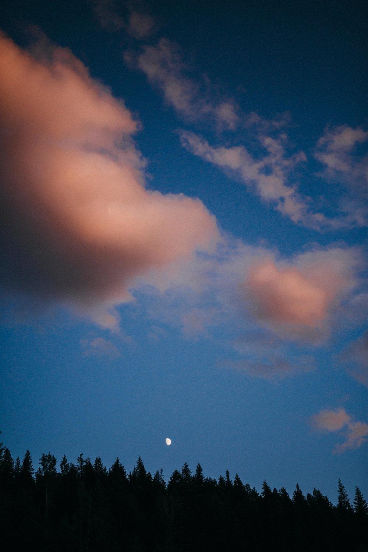 nicolemariephoto-4069.jpg