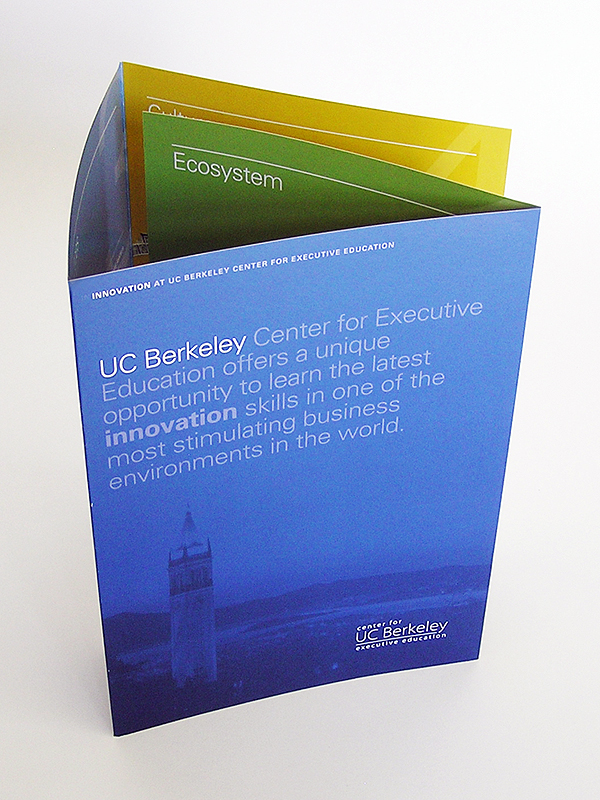 Double Gate Fold Promotional Brochures