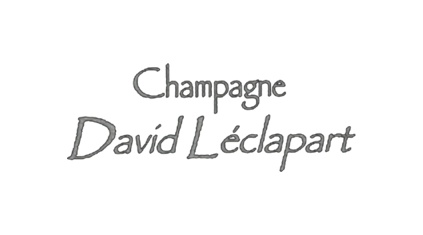 DAVID LÉCLAPART.jpg