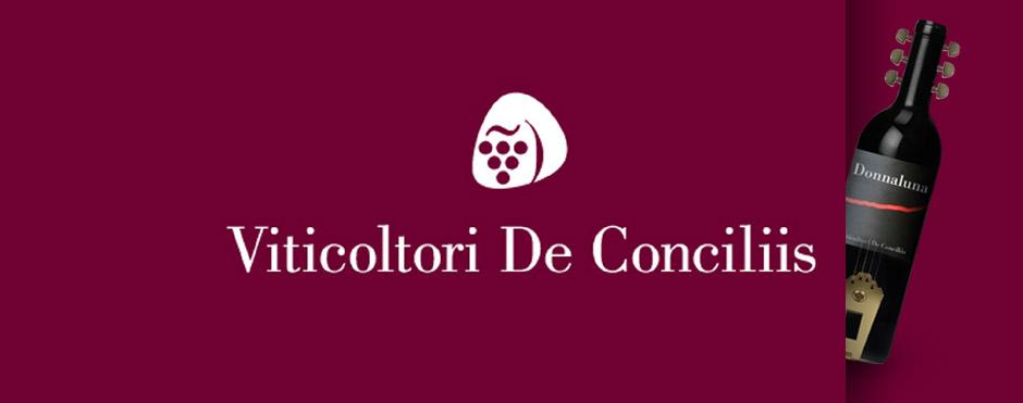 DE CONCILIIS.jpg