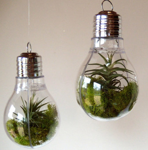 Simply Gifted:  Terrarium light bulb ornament by Optical Conclusions.