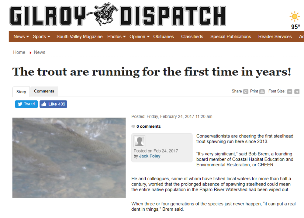 DISPATCH-STEELHEAD RUNNING.PNG