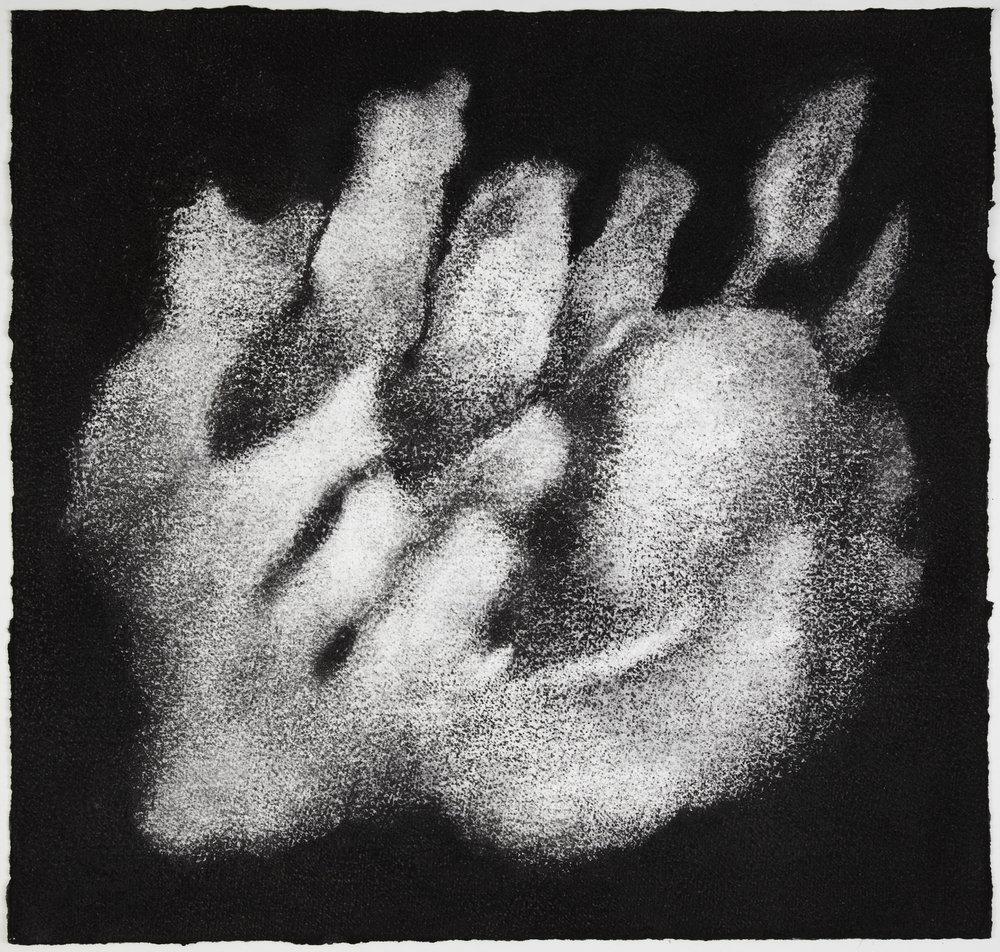 Sea sponge (detail), 2012, charcoal on white paper;57 x 60 cm