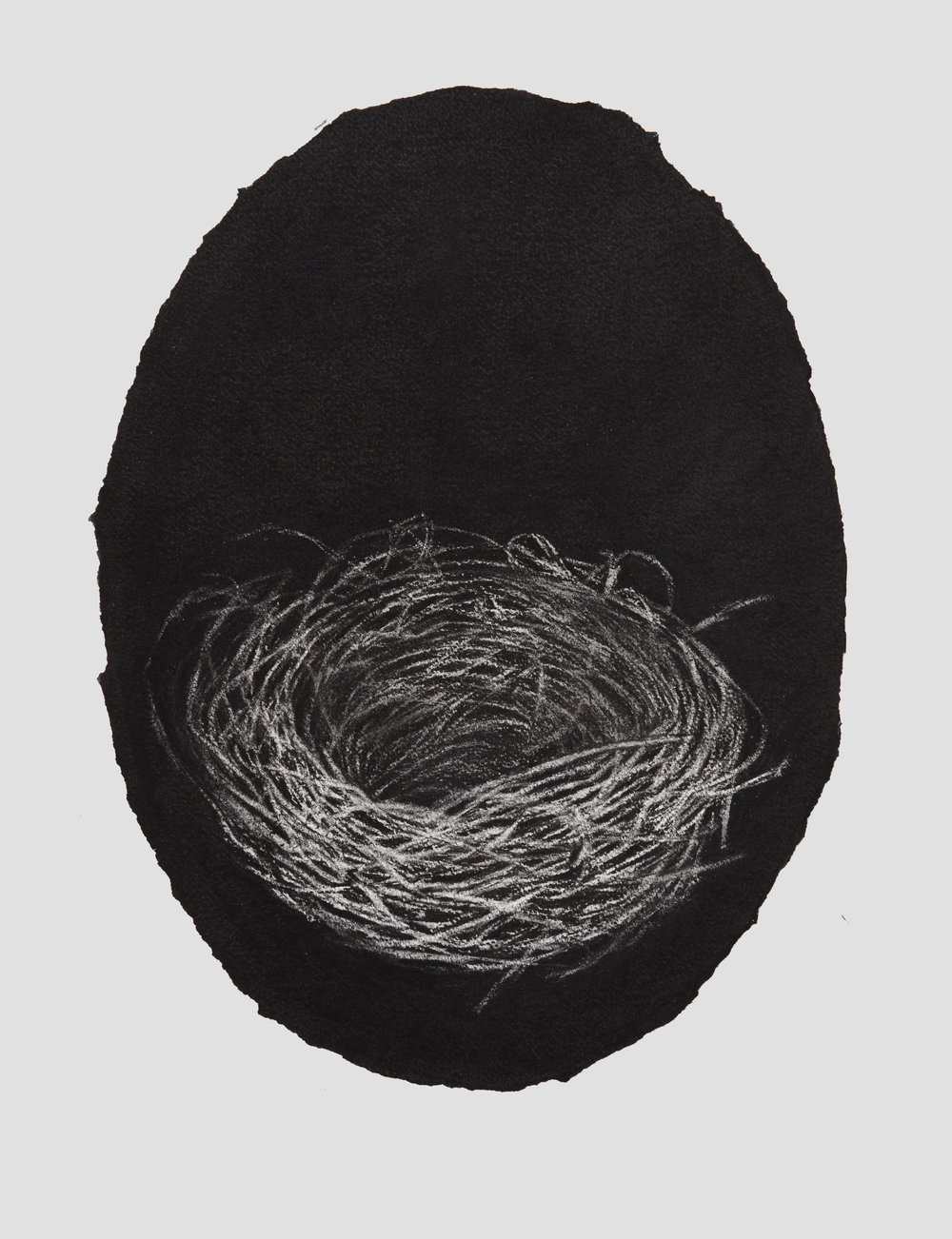 portrait nest, 2017, 44x33cm, charcoal on paper