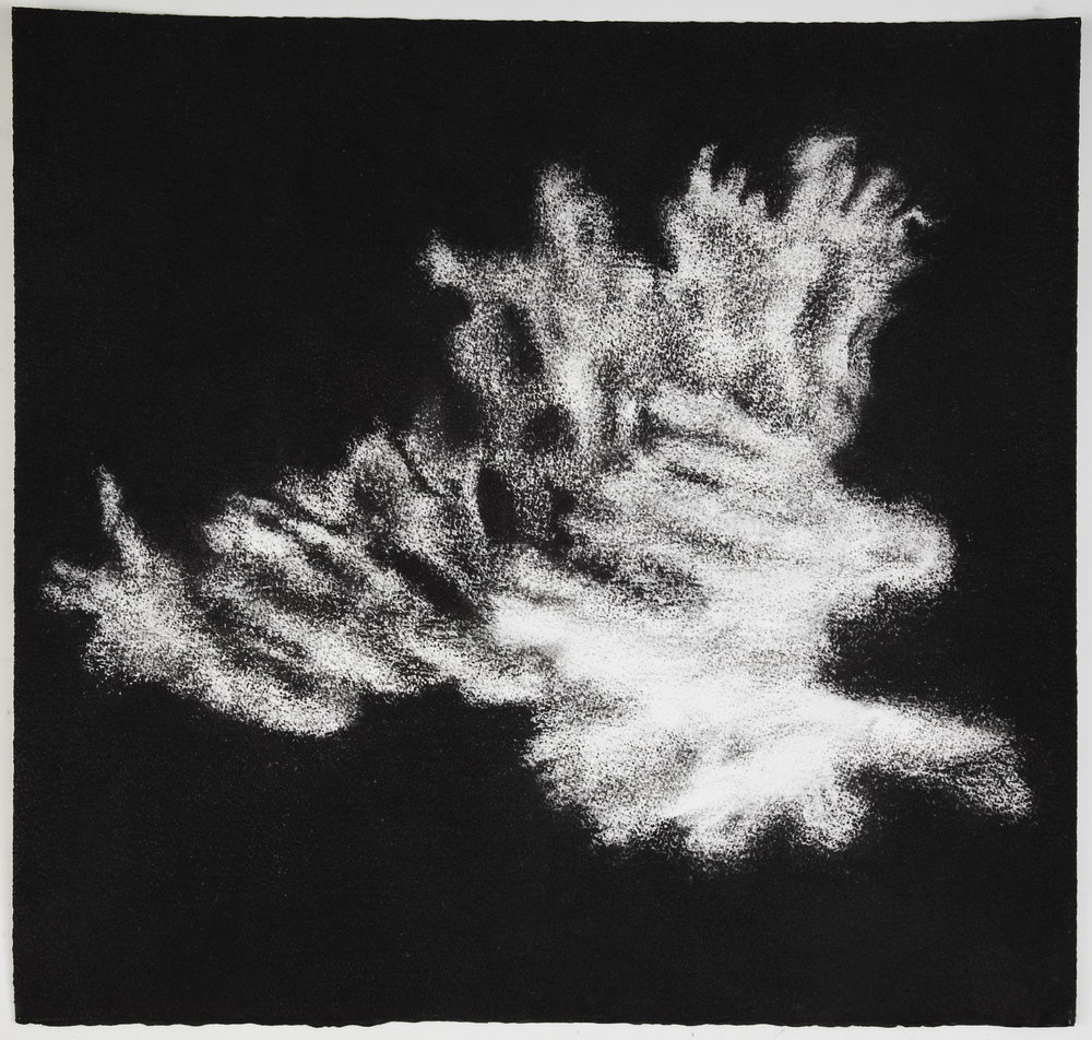 Jennifer Keeler-Milne, 2012, Sea sponge #7, 57x60cm charcoal on paper.jpg