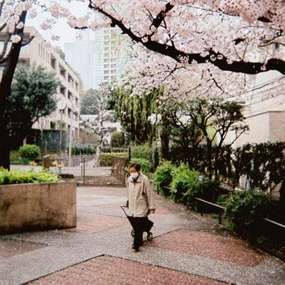 Tokyo Spring on Film (2016)