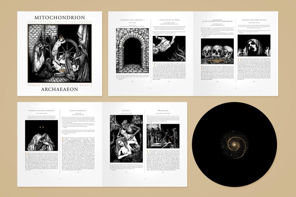 design_2012_archaeaeon02.jpg