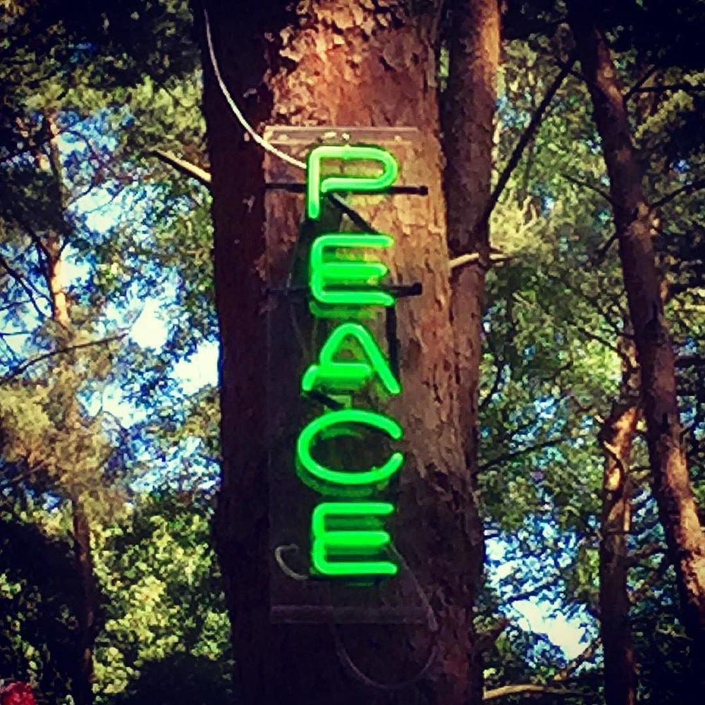 _peace__latitude.jpg