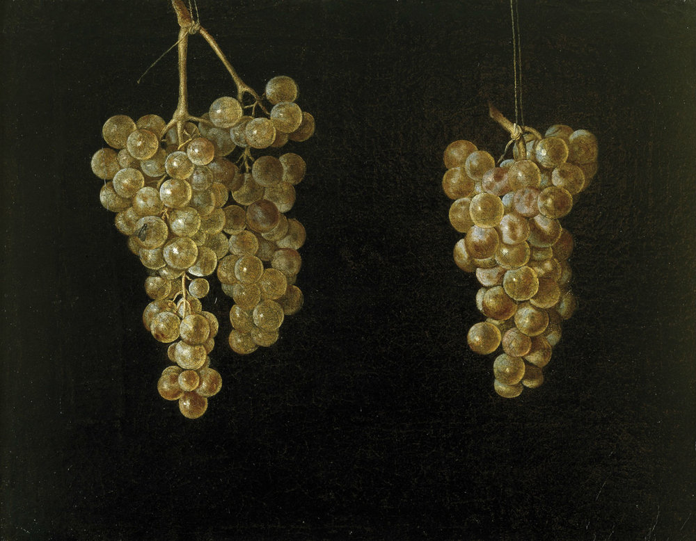 Two Bunches of Grapes Juan Fernandez El Labrador, c 1630-1644
