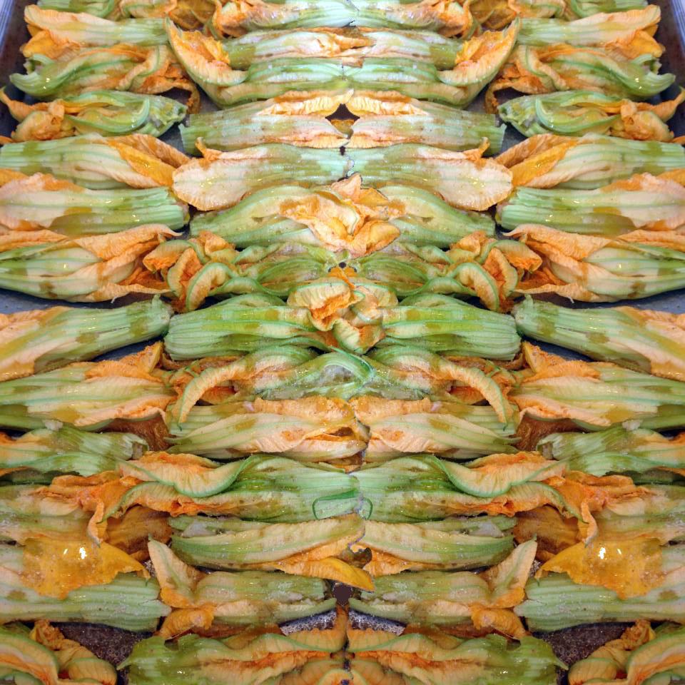 Fiori di Zucca de Ripieni made by Cristina Busnelli of Sanremo