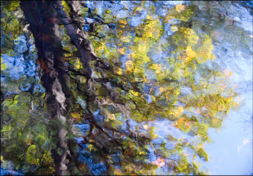monet reflection.jpg