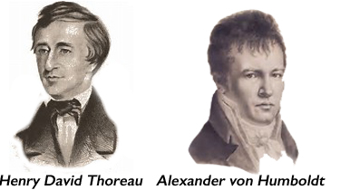 Thoreau and von Humboldt.jpg