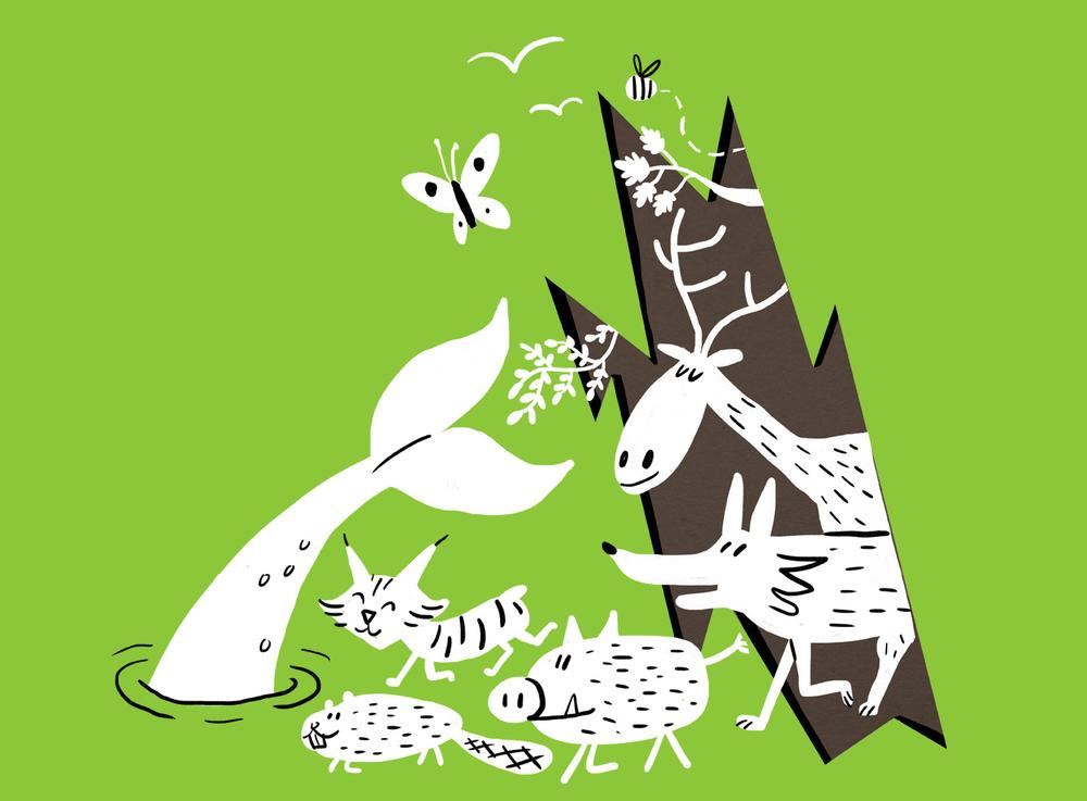 rewildinglarge.png