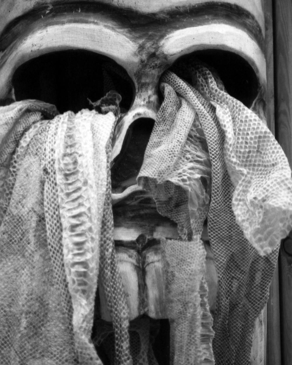 Skull; Pentax 110 Auto Super/70mm f2.8/Lomography Orca 100