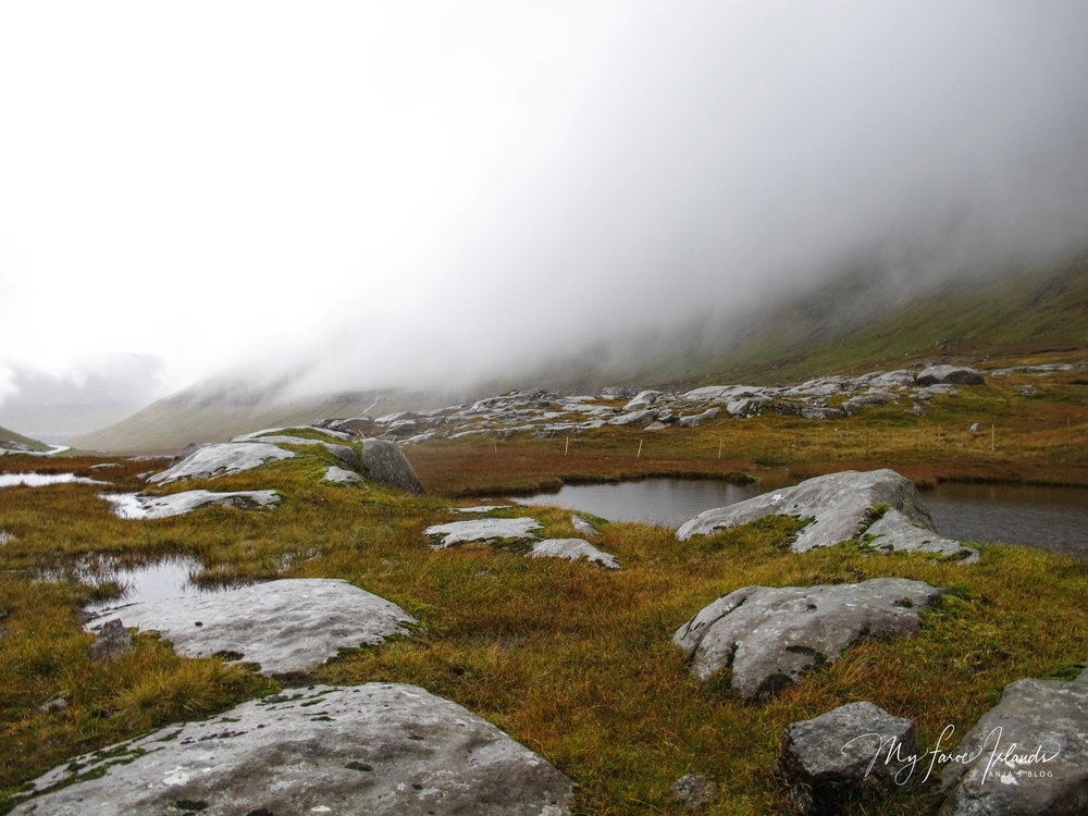 Á Klettum4, ©My Faroe Islands, Anja Mazuhn  (1 von 1).jpg