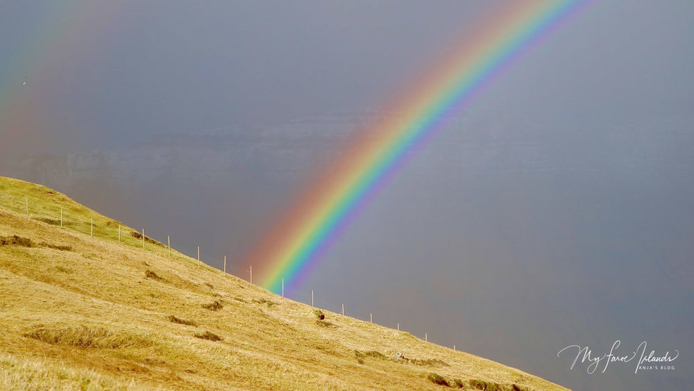 Rainbow Alert © My Faroe Islands, Anja Mazuhn  (1 von 1).jpg