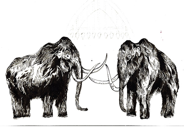 pair-of-mammoths.jpg