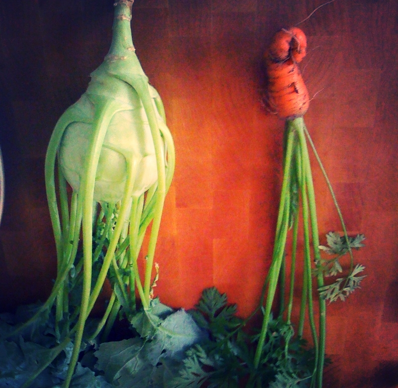 this is NOT an image from the play, but a homegrown kohlrabi and carrot that reminds me of the play