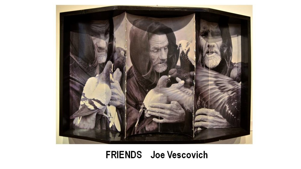 12_FRIENDS-Joe Vescovich.JPG