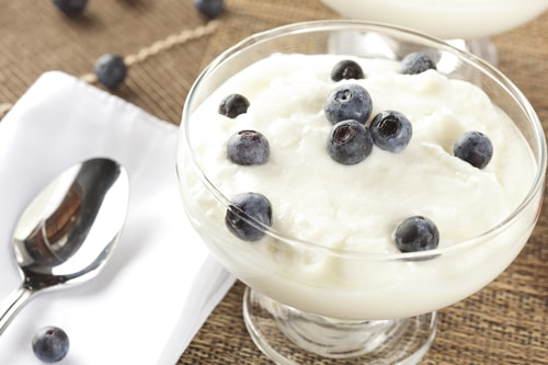 Greek Yogurt Lean Protein Source