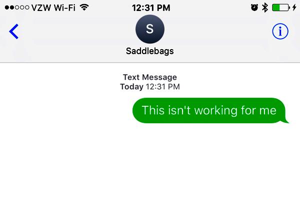 saddlebags fat