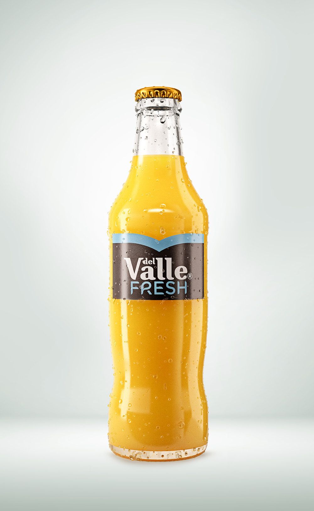 Botella_Valle_v7.jpg