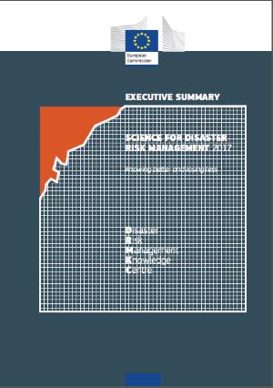Science for disaster risk management_forside.png