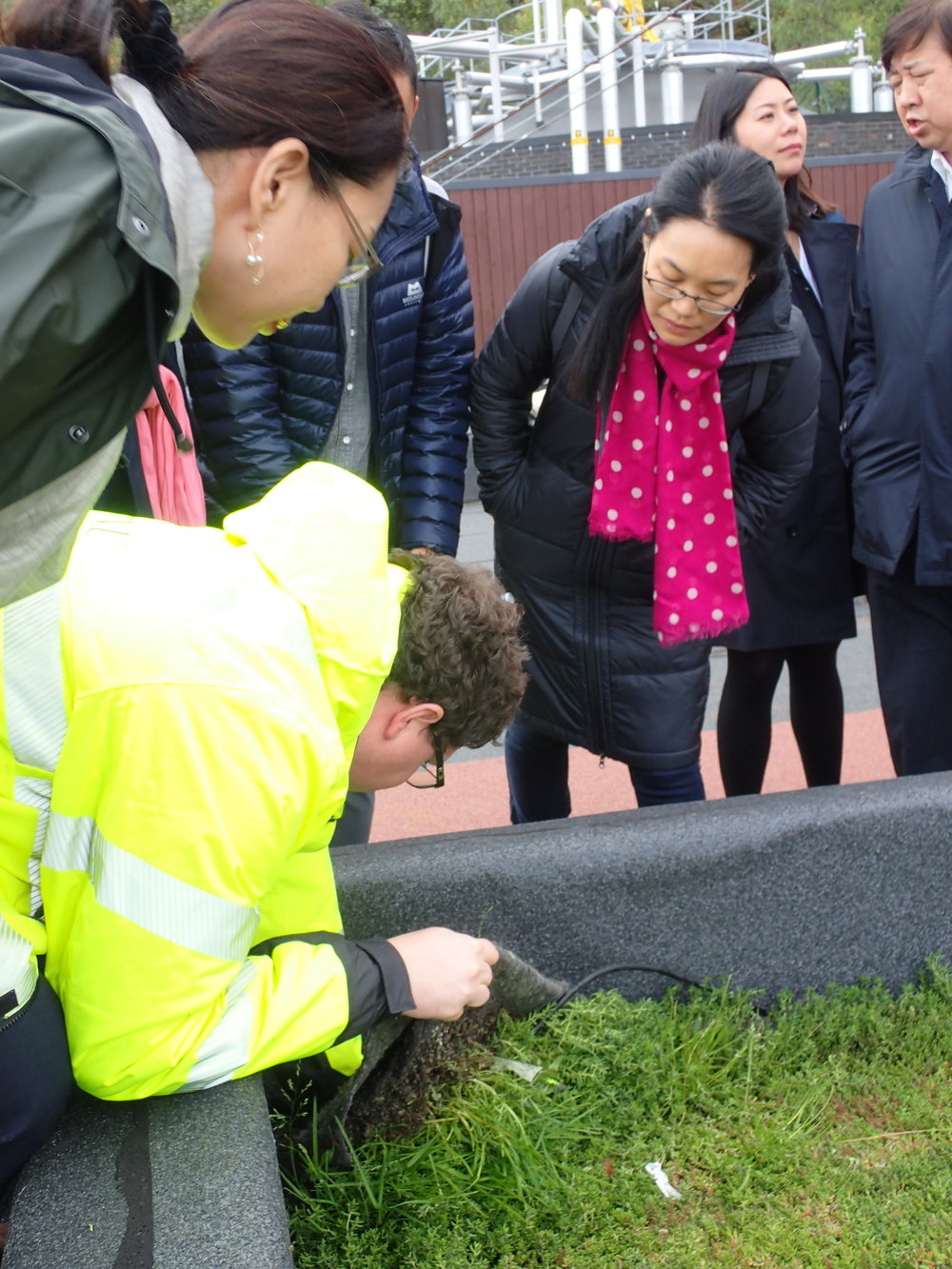 The Chinese Delegation is showing interest in the different layers of the bluegreen roof