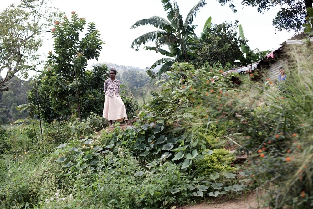 1_037_srilanka_people_steh_v2.jpg