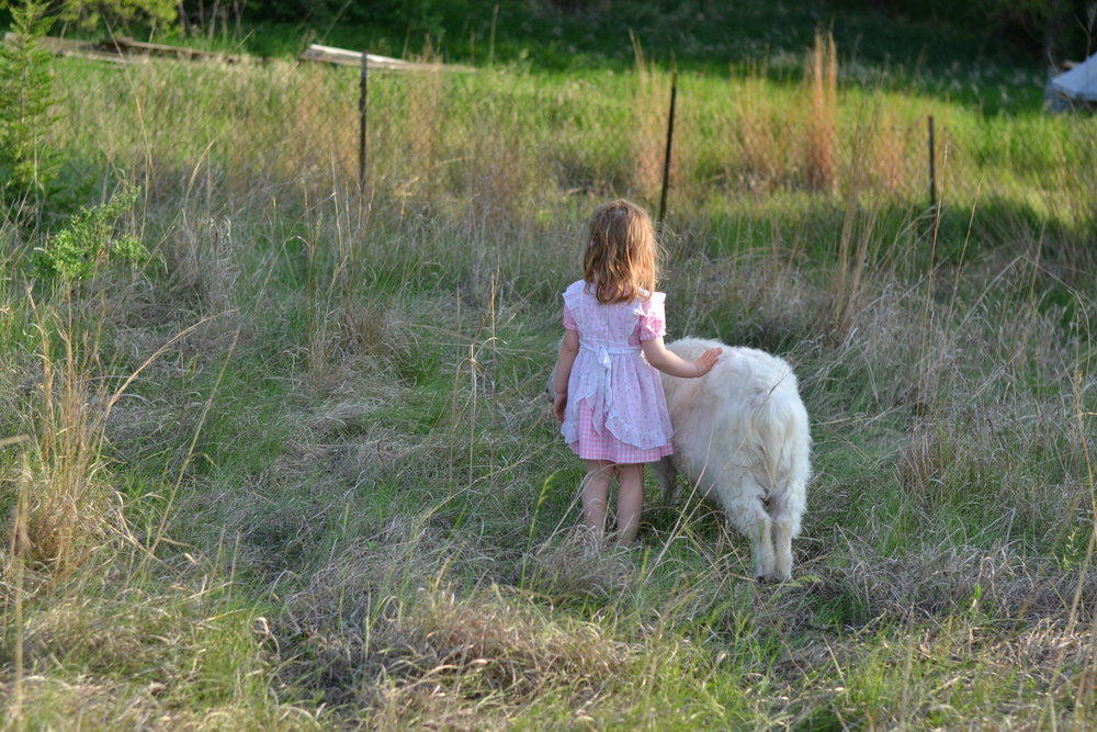 A girl and a goat