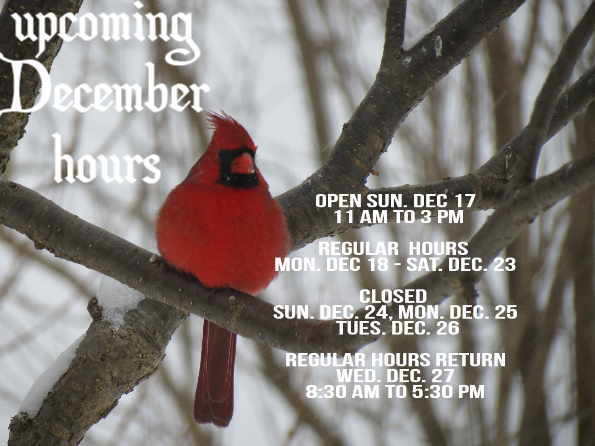 upcoming dec hours 4.png