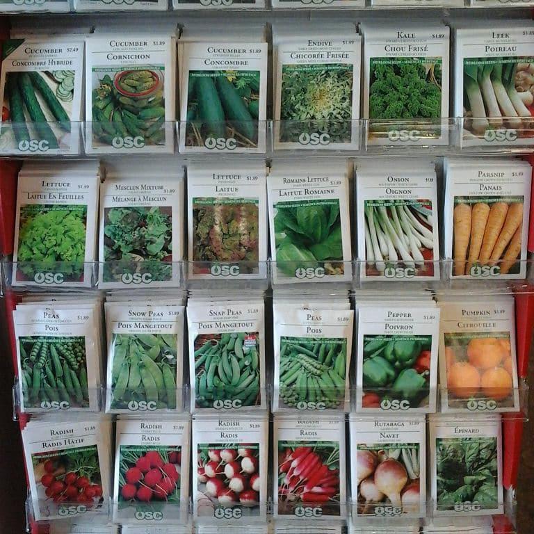 garden seeds 2 2018.jpg