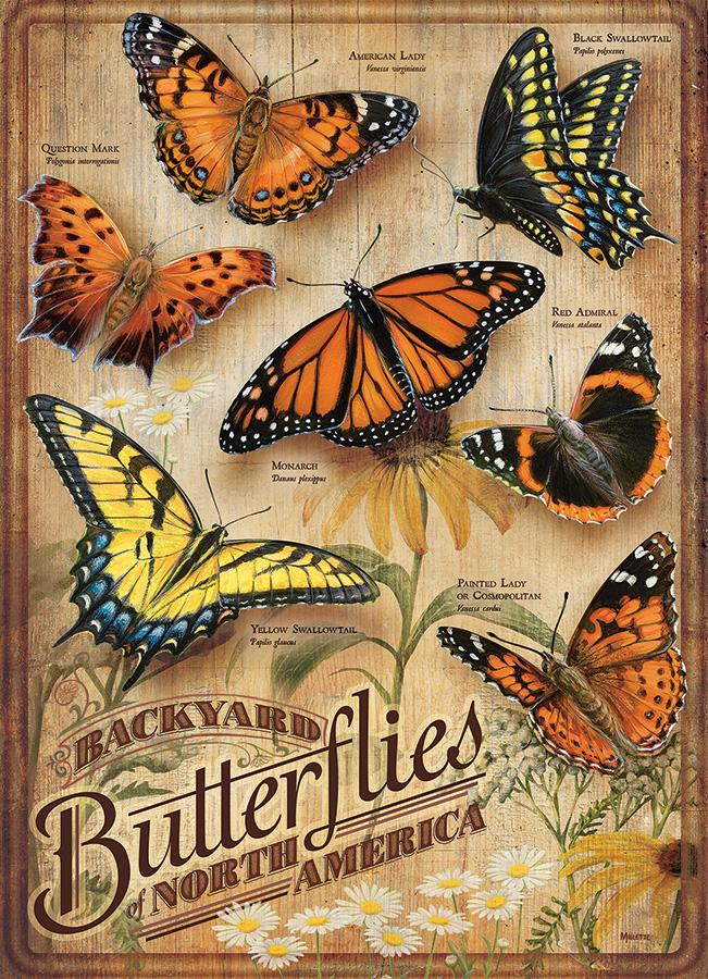 rgb-85006-backyard-butterflies.jpg