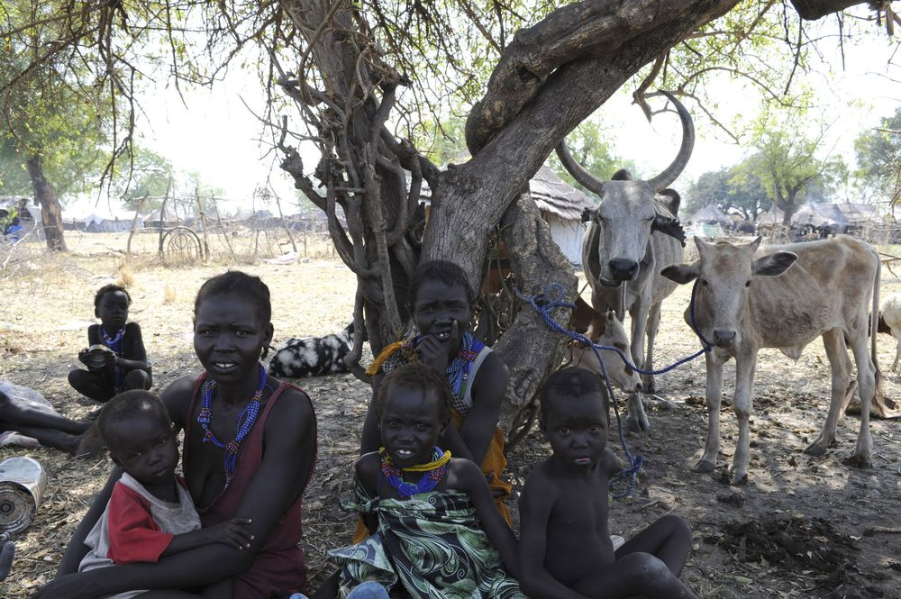 Many needs in South Sudan - IDPs in Pibor, 5/01/12/Photo courtesy of Reuters/Isaac, Billy South Sudan, born six months ago, is increasingly affected by armed violence.