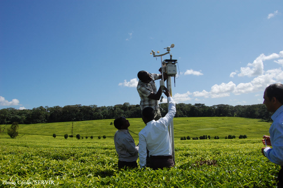 Daniel Wafula of the Regional Centre for Mapping of Resources for Development, Absae Sedah (right) of Kericho County KMS, and Eric Kabuchanga (left) of SERVIR-Africa, set up a WSN node on a tea farm in Kericho (photo credit: SERVIR) - See more at: https://servirglobal.net/Multimedia/Photos#sthash.fPK2pAO9.dpuf