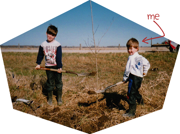 Planting some ash trees in Minesing, Ontario.