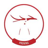 Expert Pruning