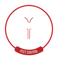 Pest Control and EAB