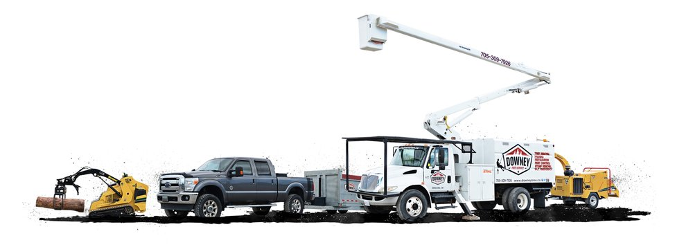 Downey Tree Service's equipment lineup