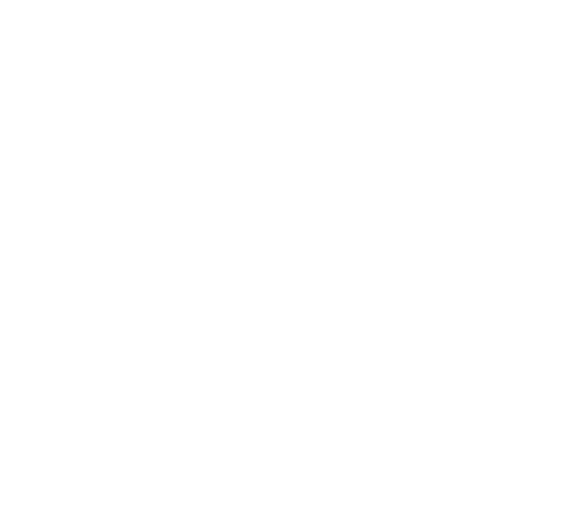 Goldstein Productions Inc.
